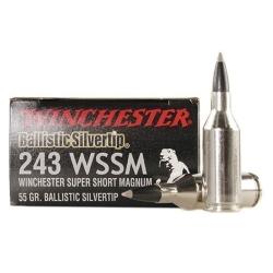 Winchester cal 243 W Super Short Magnum Ballistic Silver Tip 55gr