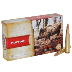 CARIC.NORMA c.30/06 180GR SWIFT A