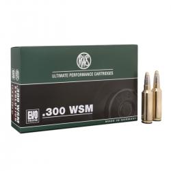 RWS 300 WSM evolution 154 gr