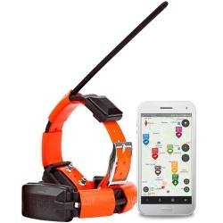DOG TRACE GPS X30T COLLARE AGGIUNTIV