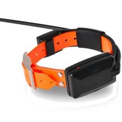 DogTrace X30 Collare Aggiuntivo