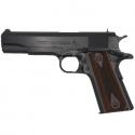 "Colt Government Cal. 45 ACP 5"" 8C."
