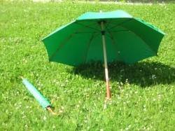 Ombrello Verde con Manico in Legno