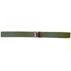 Virginia Cintura Verde Fibbia Silver 110x3cm