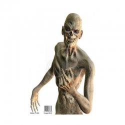 Benchmaster Bersaglio Mummia