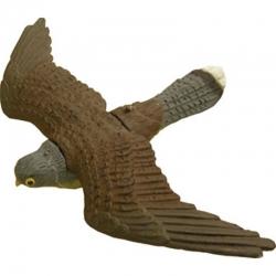 Falco in volo