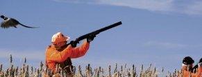 Fucili sovrapposti - Sovrapposti caccia