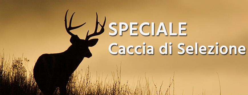 Caccia di Selezione al cervo e capriolo - Dimar Armi 4f161ae1a28